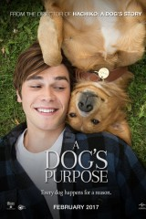 Suņa dzīves jēga plakāts