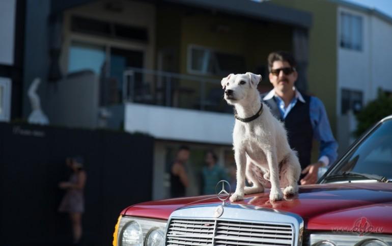Filmas Suns viņu zina 3 - kadrs no filmas