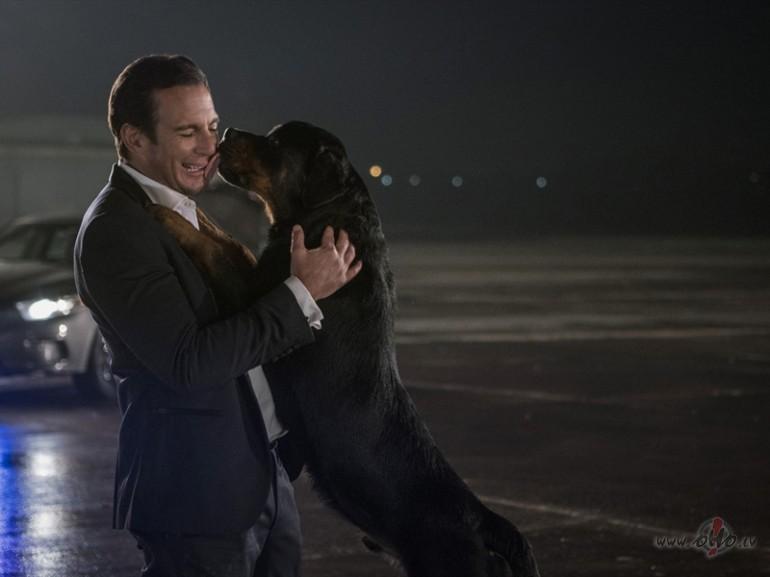 Filmas Suņu neiespējamā misija 2 - attēls no filmas