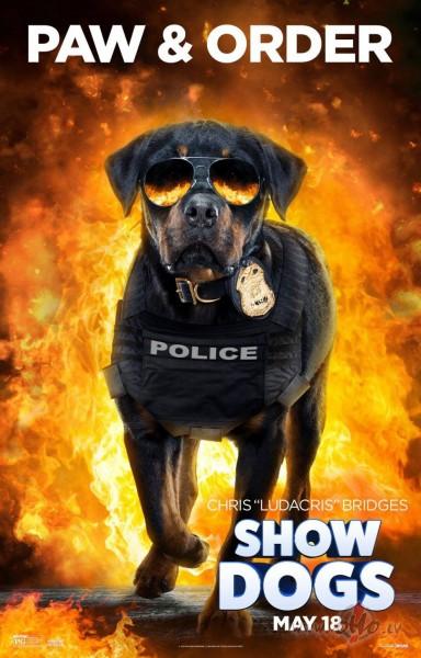 Filmas Suņu neiespējamā misija plakāts