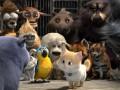 Lielā kaķu bēgšana foto 4