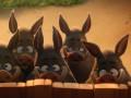 Asteriks: Brīnumdziras noslēpums foto 11