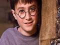 Harijs Poters un filozofu akmens foto 8