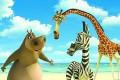 Madagaskara foto 4