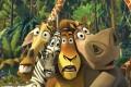 Madagaskara foto 5