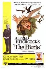 Putni plakāts