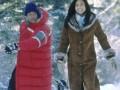 Sniega suņi foto 4