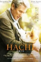 Hatiko-uzticamais draugs plakāts