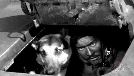 Filmas Četri tankisti un suns 3 - kadrs no filmas