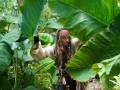 Karību jūras pirāti: Svešajos krastos foto 8