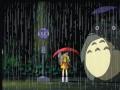 Mans kaimiņš Totoro foto 2