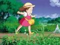 Mans kaimiņš Totoro foto 3