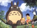 Mans kaimiņš Totoro foto 5