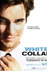 Baltā apkakle plakāts