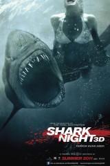 Haizivju nakts plakāts