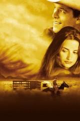 Visi skaistie zirgi plakāts
