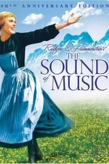 Mūzikas skaņas plakāts