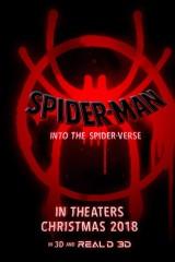 Zirnekļcilvēks: Ceļojums Zirnekļpasaulē plakāts