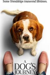 Suņa ceļojums plakāts