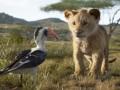 Karalis Lauva foto 2