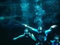 47 metri dzelmē 2: Haizivju pilsēta foto 7