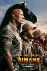 Džumandži: Nākamais līmenis plakāts