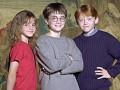 Harijs Poters un filozofu akmens foto 9