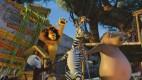 Madagaskara 2 foto 5