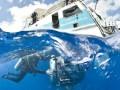 Jūras dzīlēs 3D foto 7