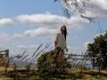 Mūsu tēvs, kas mīti kokā foto 20