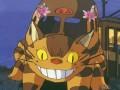 Mans kaimiņš Totoro foto 7